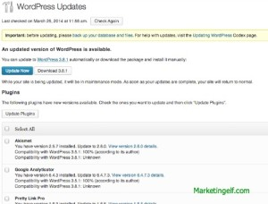 Wordpress Updates Needed