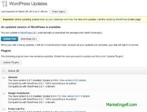 Wordpress Updates Needed